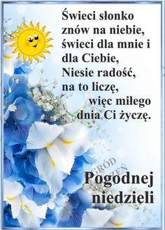 Good Morning Funny, Morning Humor, Hanukkah, Sport, Magick, Sunday, Deporte, Sports