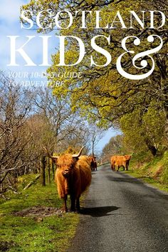 Scotland with Kids Itinerary- Pack up the kids and head to Scotland with this easy to tackle itinerary that sets a steady, but manageable pace as you see some of the most beautiful parts of the city, mountains and island that Scotland has to offer.