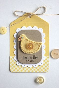 Bitty Baby Blessings Revisited: Bundle Of Joy Tag by Heather Nichols for Papertrey Ink (May 2015)