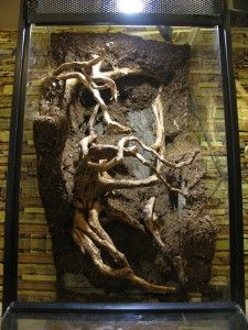 How-To Make a Natural Vivarium Background.  I'll Likely Never Make One But Reading Through The Steps Sure Inspires One To Go The DIY Route!!!  Wonderful Results!