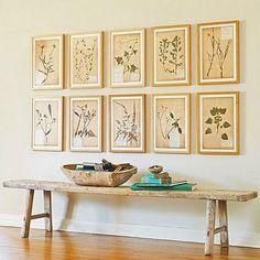 framed pressed flowers/leaves.  or illustrations?