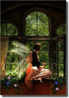 Fairy looking out window