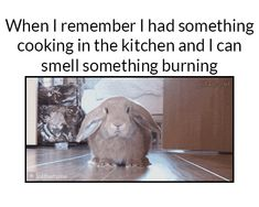Wheb I remember I had something cooking in the kitchen and I can smell something burning
