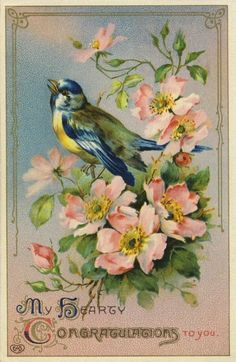 Vintage post card with bird and wild roses: