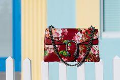 Discover Gucci's Beautiful Cruise 2016 Handbags