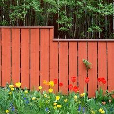 """Garden Fences that say, """"Give me color or give me death""""!"""