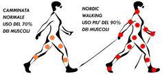 Resultat d'imatges de nordic walking Nordic Walking, Walking Poles, Benefits Of Walking, Rando, Low Impact Workout, Cross Training, Fun Workouts, Health Fitness, Cape Town