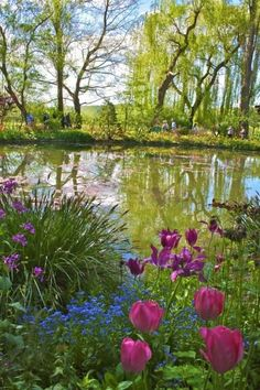 Giverny France Monet's Gardens Beautiful World, Beautiful Gardens, Beautiful Flowers, Beautiful Places, Monet Paintings, Landscape Paintings, Landscape Photography, Nature Photography, Giverny France
