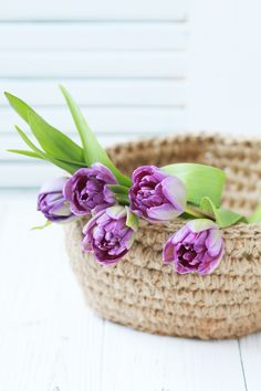 Knitted basket of jute with purple tulips on a white background. Good Morning Beautiful Images, Beautiful Flowers Pictures, Beautiful Flower Arrangements, Flower Pictures, Purple Tulips, Pink Roses, Good Night Greetings, Bouquet, Good Morning Flowers