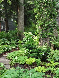 A Natural Shade Garden in Summer (Three Dogs in a Garden) Path Design, Landscape Design, Garden Design, Landscape Bricks, Forest Garden, Woodland Garden, Shade Landscaping, Garden Landscaping, Landscaping Borders