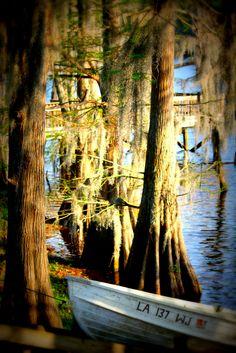 Bayou Desiard, Monroe, Louisiana