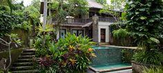 Tropical Pool, Plants, Planters, Plant, Planting, Planets