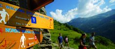 Groene Camping Noord Italië - Camping Dolomiti