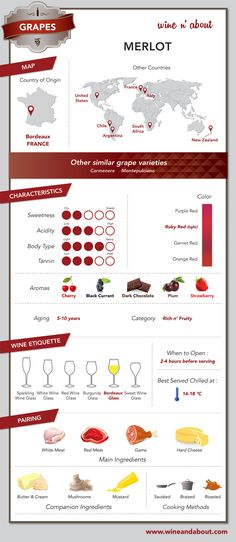 Brandy and Wine. Invaluable Tips For Learning More About Wine. Everywhere you look, there is wine. Still, wine can be a frustrating and confusing topic. If you are ready to simplify the puzzle of wine, start here. Cabernet Sauvignon, Malbec Wine, Guide Vin, Wine Guide, Wein Poster, Wine Facts, Fruity Wine, Wine Education, In Vino Veritas
