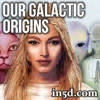 Did you ever wonder the REAL story of where our galactic lineage originated from?  Do you feel any ties to the Pleiades?  Lyra?  Sirius?  Vega?  Orion?  Arcturus?  Zeta Reticuli?
