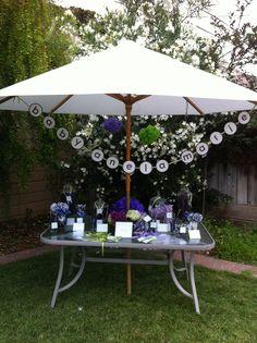 Baby Shower Candy Favor Station ... Purple & Sage Color Scheme