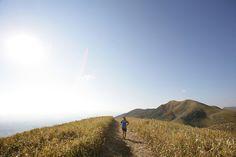 コース紹介写真 | GREEN FRONTIER HIRAODAI TRAIL 40km 北九州・平尾台トレイルランニングレース