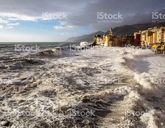 camogli with sunset light and rough sea foto stock royalty-free Photos For Sale, Stock Photos, Rough Seas, Big Waves, Cities, Royalty, Sunset, Water, Free