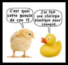 ⚠️___________________⚠️ ultimate_meme_fr_an English Jokes, Funny Quotes, Funny Memes, Troll Face, Slogan Tshirt, Image Fun, Good Humor, Cool Pets, Minions
