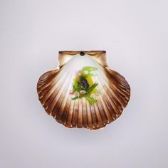 Wakame I Limette I Salikon | Marius Tim Schlatter | Gasthof Lamm / Manufaktur Jörg Geiger. Archiving Food Photography | Gastronomy