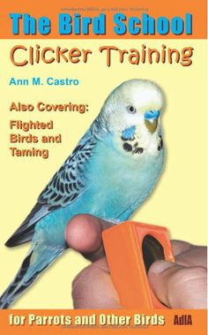 Clicker Training for Parrots and Other Birds. The Bird School: Including Flighted Birds and Taming by Ann M. Castro,http://www.amazon.com/dp/3939770655/ref=cm_sw_r_pi_dp_zjdGtb05E8DPJ66D