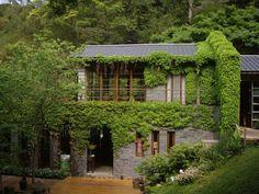 吃美食也要吃氣氛!網友推薦排行TOP10台灣不可錯過的景觀餐廳:夜景、森林浴、花海... | 白久