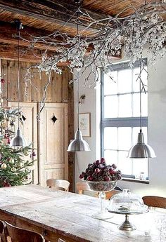 Kus přírody doma o Vánocích