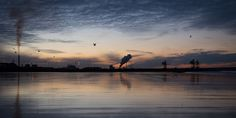 Fotografie di albe, tramonti e luci artificiali su complessi industriali, su ciminiere, torri di raffreddamento e acciaierie