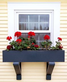 Installing Window Boxes on Vinyl Siding Installing window boxes on vinyl siding is easier than you think! Here's an easy step-by-step guide that will get those window boxes - and curb appeal - UP! Hanging Window Boxes, Wooden Window Boxes, Window Planter Boxes, Planter Ideas, Diy Flower Boxes, Window Box Flowers, Garden Windows, Farmhouse Windows, Kitchen Windows