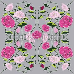 Snow-White And Rose-Red Vector Design Vektor Muster, Swiss Design, Rose Bush, Pink Blossom, Gray Background, Vector Pattern, Vector File, Red Roses, Snow White