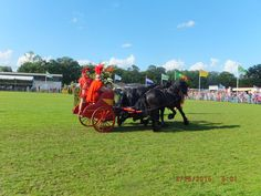 #Concours #Hippique #Groningen #2015 #paardenshow #strijdwagenshow #hengstenshow #friesepaarden #romeinsestrijdwagen