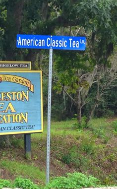 Charleston Tea Plantation | Travel | Vacation Ideas | Road Trip | Places to Visit | Wadmalaw Island | SC | Tourist Attraction | Distillery | Tour | Wine | City Park