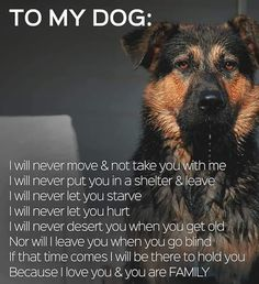 Dogs are family!! ❤🐶❤❤❤❤❤