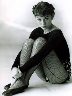 Audrey Hepburn, Anita Ekberg, and Sophia Loren in fishnet stockings. Katharine Hepburn, Audrey Hepburn Born, Golden Age Of Hollywood, Classic Hollywood, Old Hollywood, Hollywood Photo, Hollywood Glamour, Divas, Brigitte Bardot