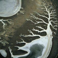 140 Best Fotografia Yann Arthus Bertrand Images Aerial
