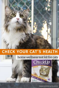CheckUp is a quick and simple urine testing kit that you can use to identify common feline health concerns in the comfort of your own home. |…