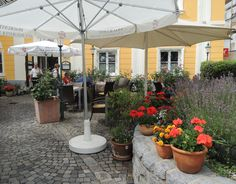Kulinarische Köstlichkeiten erwartet euch beim Babenberger Hof in Ybbs. Patio, Outdoor Decor, Plants, Garden, Home Decor, Garten, Terrace, Planters, Interior Design