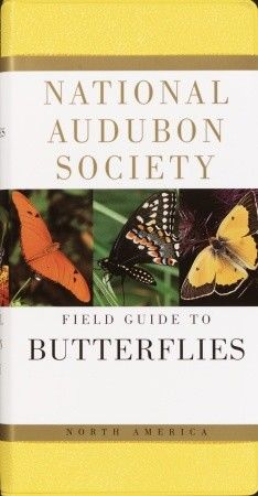 National Audubon Society Pocket Guide Familiar Butterflies Of North America National Audubon Society Pocket