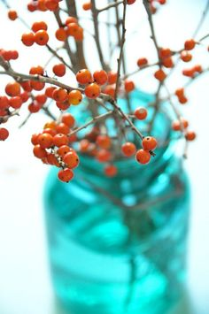 love this combo- holly branch with blue mason jar