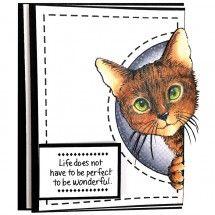 Feline Curious by Jennifer Dove