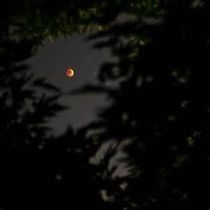 blood moon over israel - Yahoo Canada Image Search Results