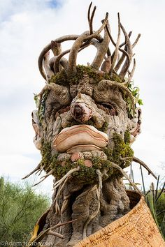 I shot this picture a few months ago at the Desert Botanical Garden in Phoenix, Arizona. They had three other statues like this which represented the seasons. This one was particularly interesting to me. It represented WInter, hence the title. Desert Botanical Garden, Botanical Gardens, Weird Trees, Tree People, Tree Faces, Unique Trees, Tree Sculpture, Land Art, Tree Art