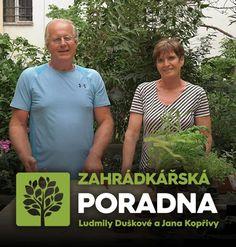 Gardening Tips, Pergola, Cousins, Outdoor Pergola