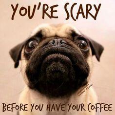Pug love & coffee love, perfect combo.
