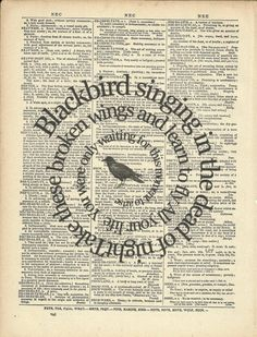 Blackbird singing in the dead of night. Take these broken wings and learn to fly. All you life, you were only waiting for this moment to arrive. ~The Beatles music quote Les Beatles, Beatles Art, Beatles Songs, Beatles Poster, Typo Poster, Book Page Art, Book Pages, Book Art, Song Lyrics Art