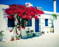 Diseño y decoración de interiores y exteriores estilo griego | Estilos | Decoracion de Interiores | Interiorismo