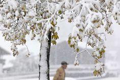 Mrazivé počasie sa presunie, snežiť môže v Aténach i v Istanbule - Zahraničie - TERAZ.sk