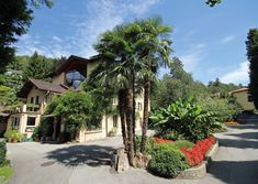 Holidays in Ticino at lake with a pool and exotic garden. Make a reservation at the family-friendly Lugano Youth Hostel! Lugano, Building Exterior, Hostel, Plants, Travelling, Exotic, Plant, Planets
