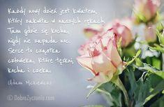 Każdy nowy dzień jest kwiatem Który zawita w naszych rękach Tam gdzie się kocha Nigdy nie zapada noc Serce to cząstka człowieka,które tęskni,kocha i czeka  Adam Mickiewicz