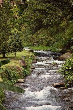 Panama for Addiction Treatment at Serenity Vista. Recover in Paradise. www.serenityvista.com